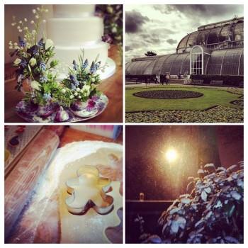 wedding cake, Kew Gardens, baking, snow