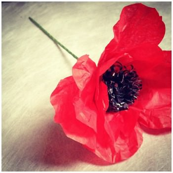 paper flower poppy DIY wedding planner