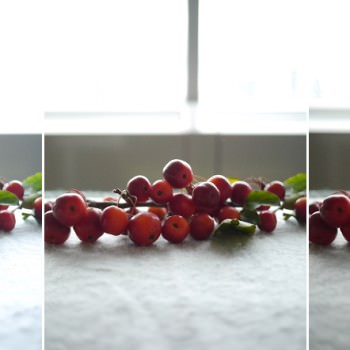 berry photo practsing spot metering and exposure