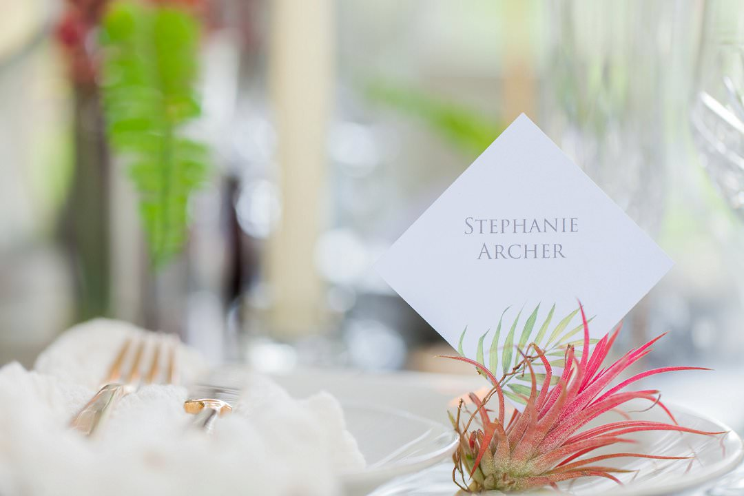 airplant palce card holder troprical wedding inspiration shoot trend