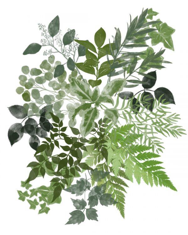 Always Andri Foliage Procreate Brushes for colour