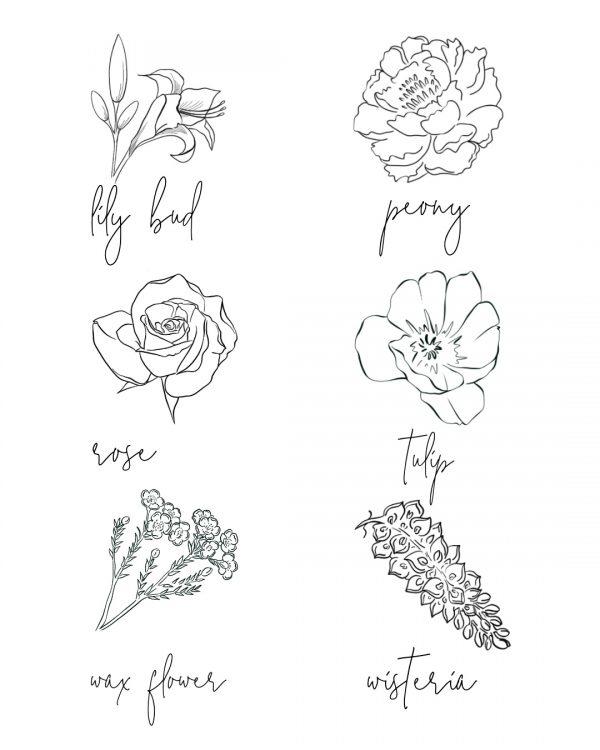 Procreate Brushes Ink Flowers Always Andri