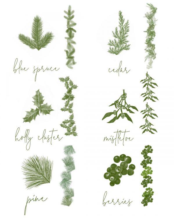winter foliage brushes blue spruce, cedar, holly, mistletoe, pine, berries